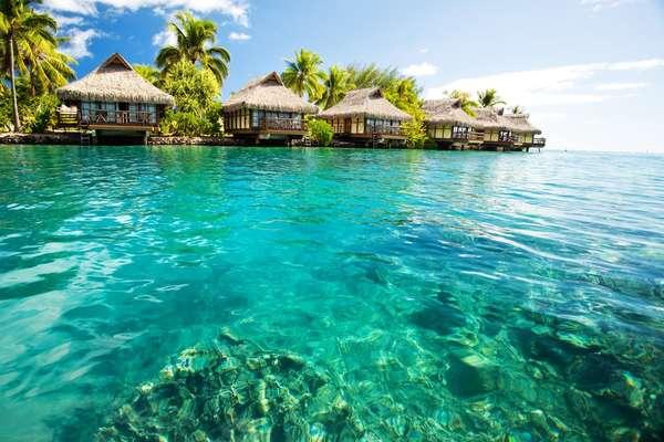 Nuku Hiva / île Marchand (Îles Marquises), Polynésie française