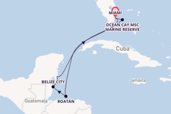 Cruise met MSC Cruises naar het avontuurlijke Miami