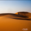Wüste, Wadis und Schildkröten