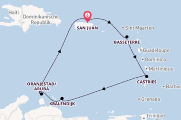 Einmalige Reise über Basseterre in 8 Tagen