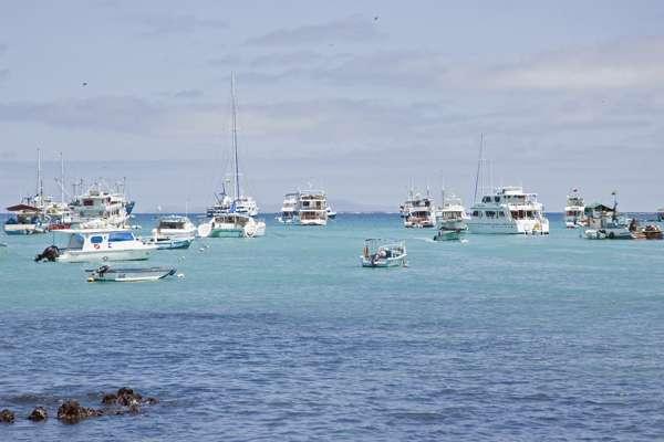 Puerto Ayora (Santa Cruz), Galapagos Islands, Ecuador
