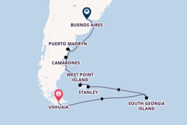 Fare rotta verso Puerto Madryn a bordo di Silver Wind