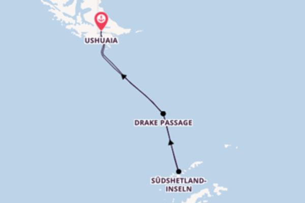 Reise in das Land der Pinguine ab/bis Ushuaia