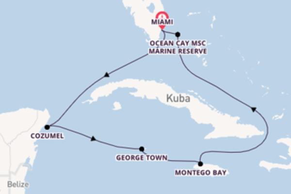 Traumhafte Kreuzfahrt mit der MSC Seashore