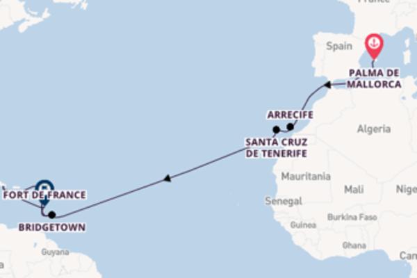 Ervaar Santa Cruz de Tenerife met TUI Cruises