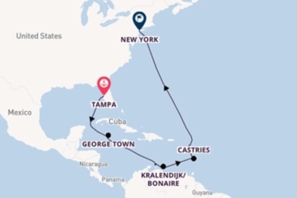 Prendere il largo verso New York da Tampa