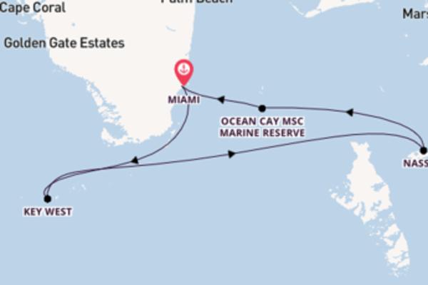 8-daagse reis aan boord van het MSC Armonia