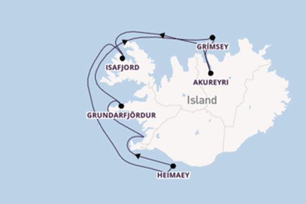 7-tägige Kreuzfahrt bis Reykjavik
