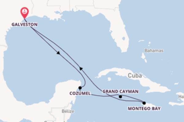 Ile de Grand Cayman et une incontournable croisière depuis Galveston