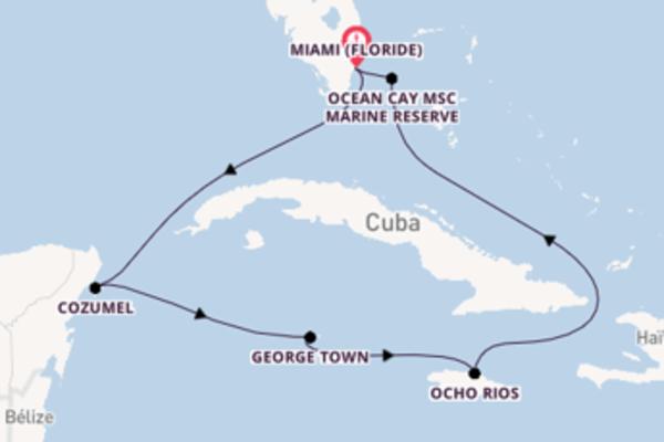 8 jours de navigation à bord du bateau MSC Meraviglia depuis Miami (Floride)