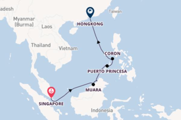 Geniet van een 12-daagse cruise naar Hongkong