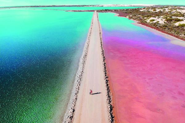 Dirk Hartog Island, Shark Island, Australia