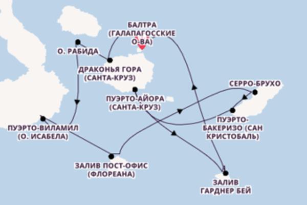 Удивительный вояж на 8 дней с Celebrity Cruises