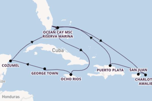Divertente viaggio verso Miami