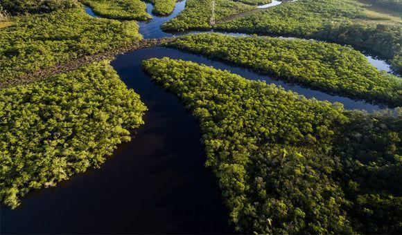 Amazonas1