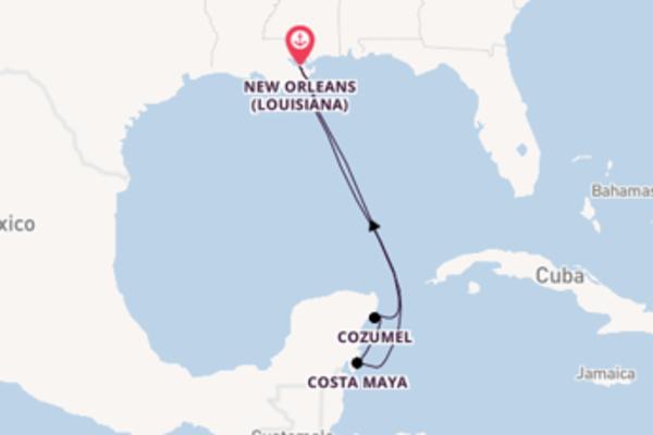 Esaltante viaggio di 7 giorni verso Cozumel a bordo di Majesty of the Seas