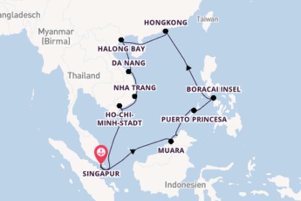 In 22 Tagen nach Singapur über Puerto Princesa