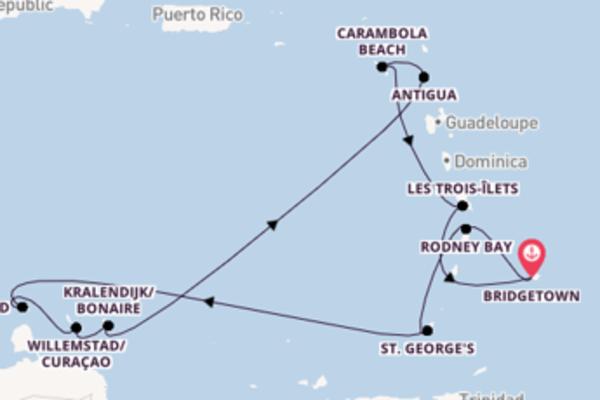 Lasciati affascinare da Kralendijk/Bonaire arrivando a Bridgetown