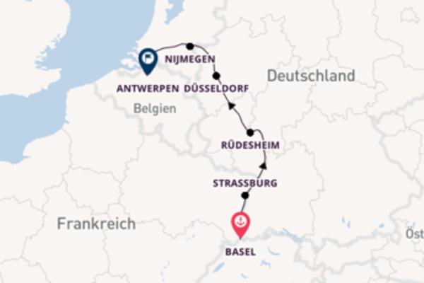 Rhein Weihnachtswunder