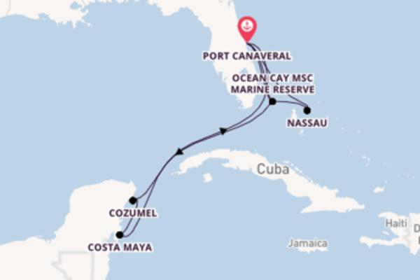 12-daagse cruise met het MSC Divina vanuit Port Canaveral