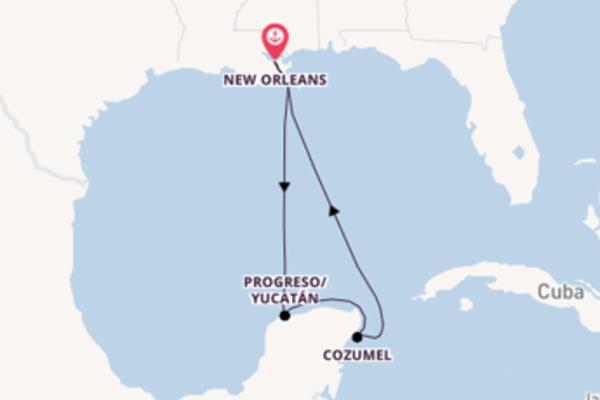 Geniet van het betoverende Progreso/Yucatán met Disney Cruise Line