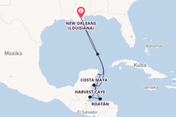 8-tägige Kreuzfahrt ab New Orleans (Louisiana)