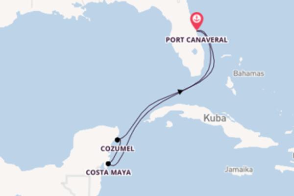 Kreuzfahrt mit der Norwegian Sun nach Port Canaveral