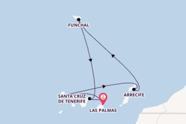 Funchal bezoeken met de AIDAmar
