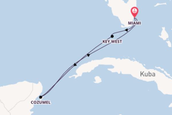 Bereisen Sie 5 Tage Cozumel und Miami