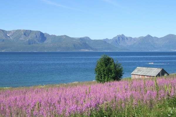 Stokmarknes, Norway