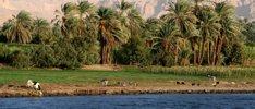 15 Tage Kombinationsreise Ägypten