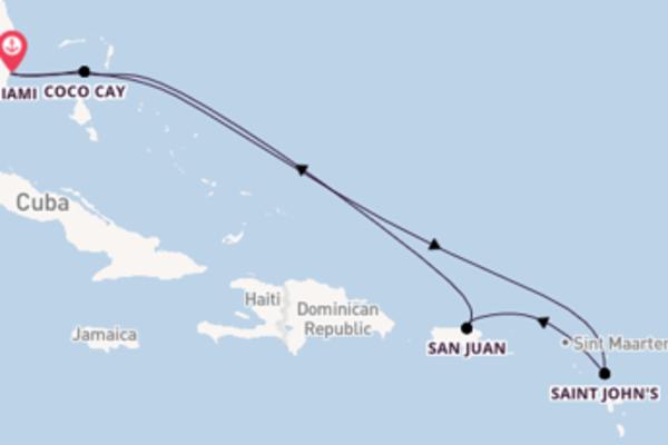 Crociera da Miami verso Saint John's