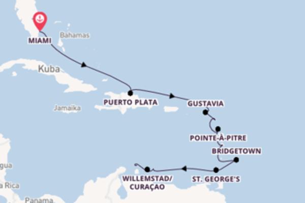 Zauberhafte Kreuzfahrt von Miami nach Oranjestad/Aruba