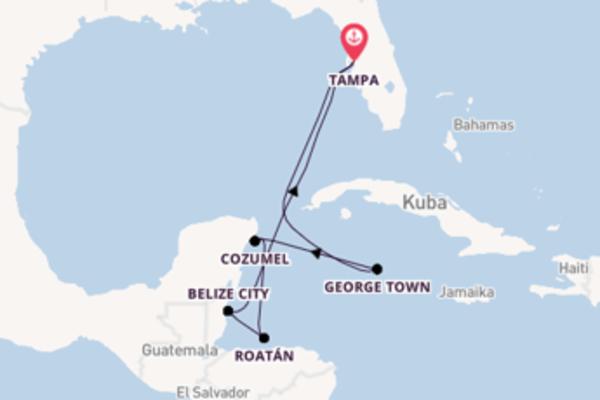 Erleben Sie 8 Tage Cozumel und Tampa