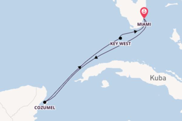 In 6 Tagen nach Miami über Cozumel