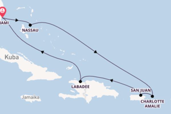 Kreuzfahrt mit der Allure of the Seas nach Miami