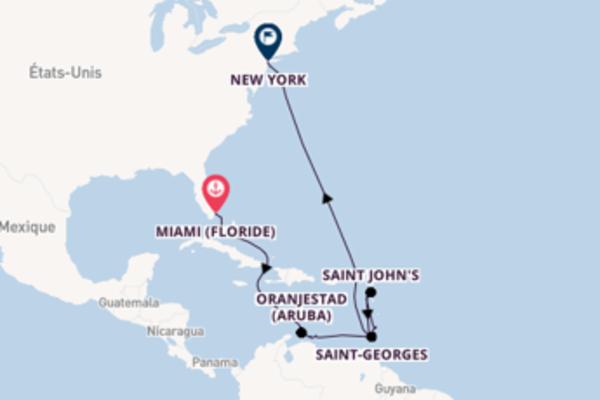 16 jours pour découvrir Saint John's