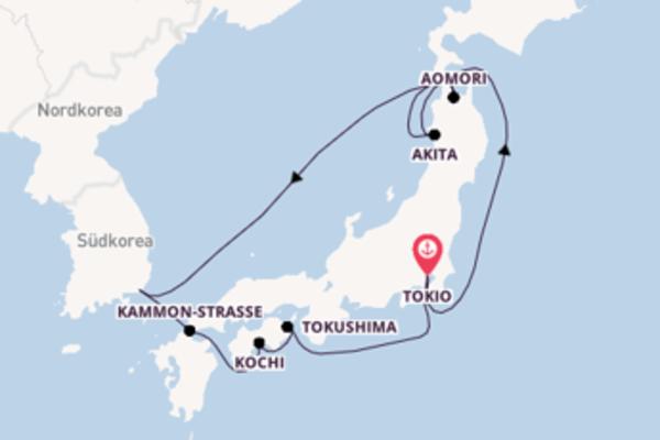 Von Tokio über Kochi in 11 Tagen