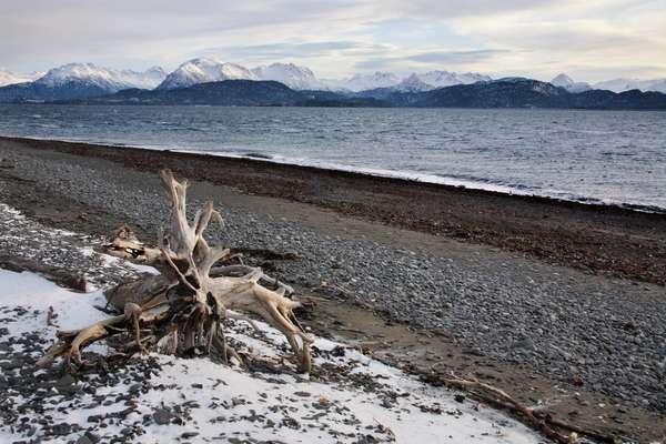 Хомер, Аляска