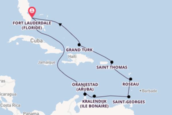 11 jours de navigation à bord du bateau Sky Princess vers Fort Lauderdale (Floride)