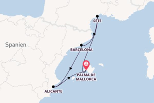 6-tägige Kreuzfahrt bis Palma de Mallorca