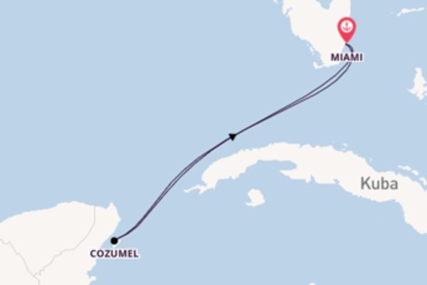 Erkunden Sie 5 Tage Cozumel und Miami
