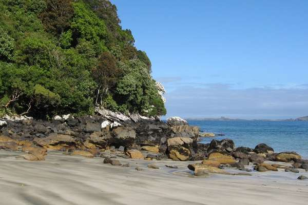 13-Day Picturesque Expedition to Kaikoura