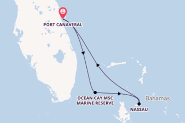 Port Canaveral und Ocean Cay MSC Marine Reserve entdecken
