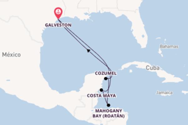Admirável viagem com a Carnival Cruise Line