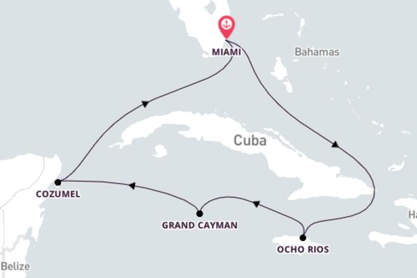 Vibrant Ocho Rios from Miami 7-Day Sail