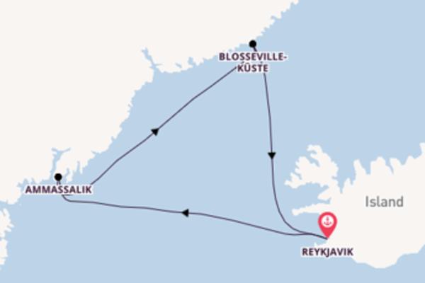 Großartige Kreuzfahrt über Ammassalik nach Reykjavik