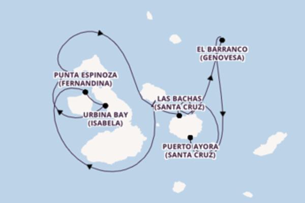 Crociera da Baltra verso Puerto Egas (San Salvador)