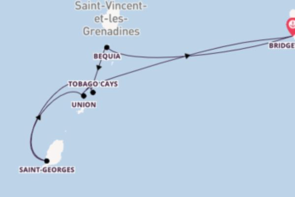 Belle balade de 8 jours à bord du bateau SeaDream II