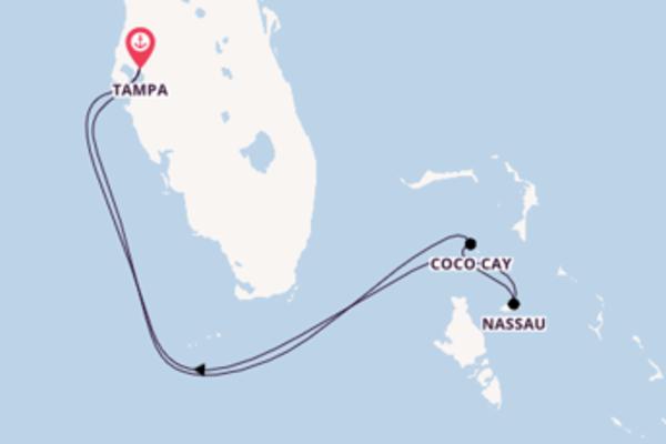 6 jours pour découvrir Coco Cay à bord du beateau Brilliance of the Seas